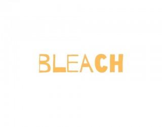 Bleach: 5 curiosità su Toshiro Hitsugaya, dal suo aspetto al suo ruolo