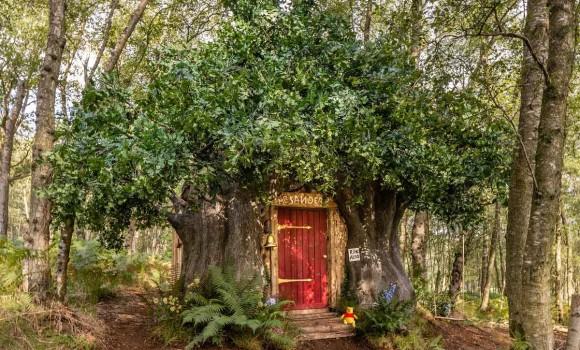 Da oggi si può dormire nella casa di Winnie the Pooh con Airbnb
