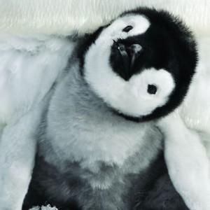 La marcia dei pinguini - il ritorno: le più belle foto di scena